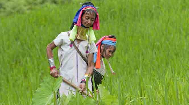 Visit the exotic long-necked Karen hill tribe in Mae Hong Son
